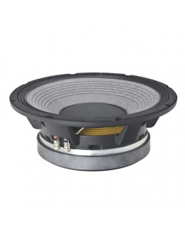 Low Frequency Speaker BW300A
