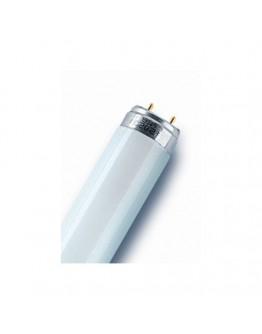 Luminescen tube 8W