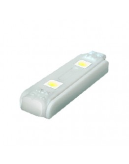 Led module, 2 diodes,  white, waterproof