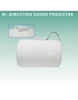 Speaker 100V CSL309
