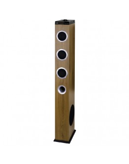 Speaker XT10A8BT WOODEN Active